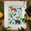 Woodland Fine Art Print