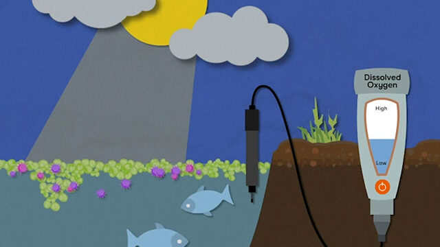 Educational STEM Animations